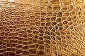 Tint Golden Crocodile Skin Texture Royalty Free Stock Image - 26986336