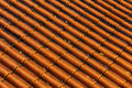 Roof Tiles Royalty Free Stock Images - 26995709