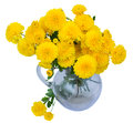 Bouquet Of Mums In Vase Stock Images - 27018874