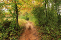 A Walking Trail Stock Photography - 27023922