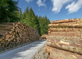 Pile Of Freshly Sawn Logs Royalty Free Stock Images - 27031099