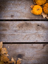 Fall Harvest Background Stock Image - 27034991