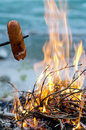 Grill Sausage At The Campfire Royalty Free Stock Images - 27068419