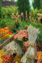 Gardens By The Bay, Flower Dome: Autumn Harvest Royalty Free Stock Photography - 27088007