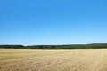 Field With Dry Grass Stock Photos - 27108183