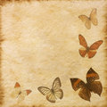 Old Grunge Butterfly Paper Texture Royalty Free Stock Images - 27117619