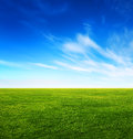 Green Grass Field And Bright Blue Sky Stock Photo - 27123890