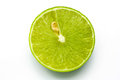 Fresh Ripe Lime Royalty Free Stock Photography - 27124457