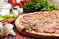 Pizza With Mushrooms Royalty Free Stock Photo - 27137475