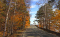 Autumn Forest Road Royalty Free Stock Photography - 27144577
