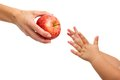 Babies Hands Reaching Out To Apple. Stock Photography - 27161762