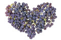 Vine Grapes Heart Concept Stock Photography - 27179242