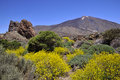 Mount Teide At Canary Island Royalty Free Stock Image - 27180516
