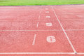 Racetrack In Sport Arena With Grass Stock Image - 27185211