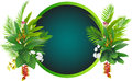 Beauty Tropical Flowers And Plants Background Royalty Free Stock Photos - 27220318