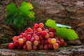 Grape Royalty Free Stock Images - 27261099