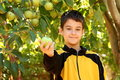Boy With Apple Stock Photography - 27271312
