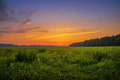 Sunset Over Meadow Stock Photography - 27280282