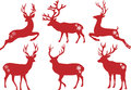 Christmas Deer Stags, Vector Set Royalty Free Stock Photo - 27305625