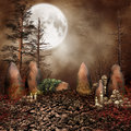 Ring Of Stones With Skulls Royalty Free Stock Photo - 27313955