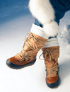 Winter Shoes In Snow Stock Photography - 27370002