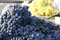 Grapes Royalty Free Stock Photography - 27390207