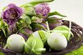Easter Still Life Royalty Free Stock Photo - 27391785