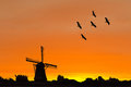 Silhouette A Dutch Windmill And Crane Birds Royalty Free Stock Images - 27405879