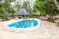 Swimming Pool In African Garden Royalty Free Stock Photo - 27443515