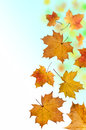 Falling Leaves Royalty Free Stock Photography - 27443877