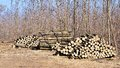 Pile Of Wood Stock Photography - 27461082