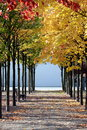 Beautiful Colorful Autumn Royalty Free Stock Photo - 27533755