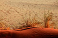 Sand Dune With Ripples And Fairy Circles Stock Images - 27572704