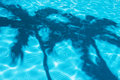 Palm Tree Shadows In Pool Royalty Free Stock Photography - 27594587