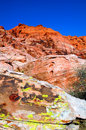 Moss In Red Rock Canyon Nevada Royalty Free Stock Photos - 2766398