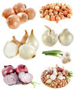 Group Of Onions Royalty Free Stock Photo - 27612365