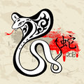 Year Of The Snake 2013 Royalty Free Stock Image - 27642036