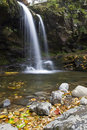 Grotto Falls, Great Smoky Mountains NP Royalty Free Stock Photography - 27649577