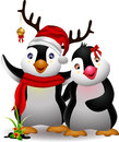 Cute Penguin Christmas Cartoon Couple With Love Royalty Free Stock Photography - 27671287