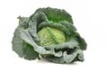 Green Cabbage Stock Images - 27689374
