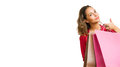 Shopping Banner With Brunette Beauty. Stock Image - 27700331