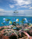 Boat Alone Above A Coral Reef With Shoal Of Fish Royalty Free Stock Images - 27717989