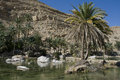 Oasis In The  Desert Stock Photos - 27740303