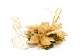 Golden Christmas Decorative Flower On White Royalty Free Stock Photography - 27746547