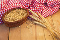 Basket Of Corn And Wheat Ear Stock Image - 27768151