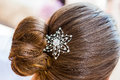 Hair Clip Royalty Free Stock Photo - 27807705
