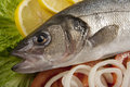 Freshly Bass Fish With Vegetables Stock Image - 27847721