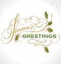 SEASONS GREETINGS Hand Lettering (vector) Stock Photos - 27875963