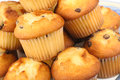 Muffins With Chocolate Chips Stock Photo - 27898210