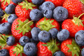 Strawberries And Blueberries Stock Photos - 2791183